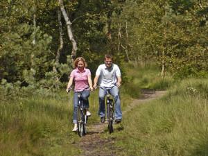 fietsverhuur bossen