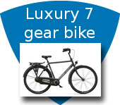 Luxury 7 gear bike