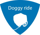 Doggycar rental beach egmond aan zee